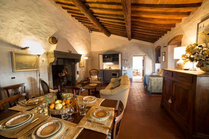 Large antique apartment in the Tuscany countryside - Subbiano - Leilighet