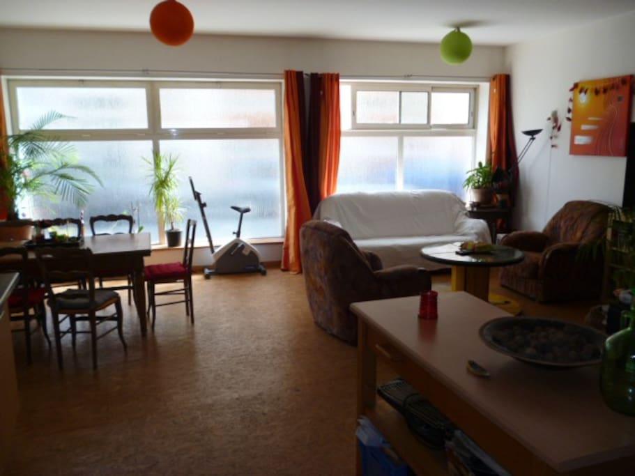 appartement entier type loft quartier berriat lofts for rent in grenoble auvergne rh ne. Black Bedroom Furniture Sets. Home Design Ideas