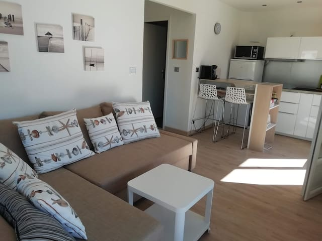 Superbe appartement lumineux cœur de ville  35 m2