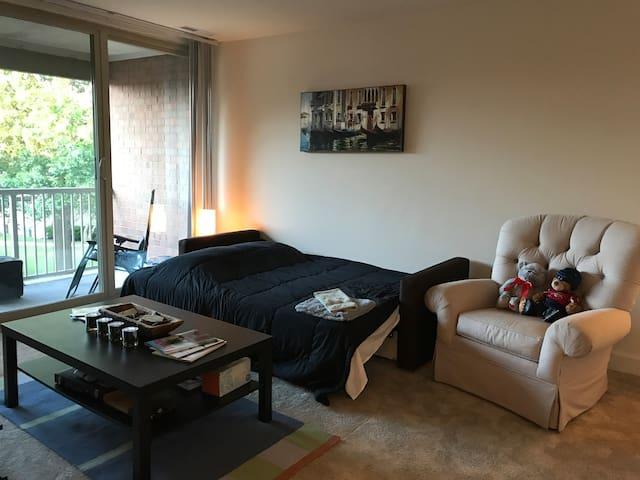 Queen Sleeper-Sofa in Living Room | Parking | Bus