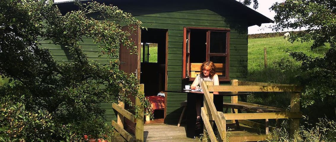 The Shepherds hut - Lancashire - Pondok