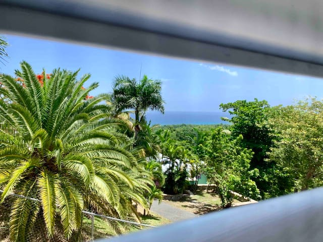 Ocean View, Updated Home near Sandy Beach & Tamboo