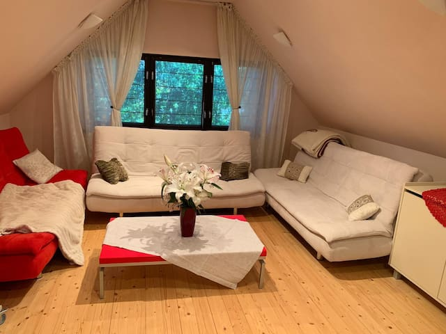 Cozy guest house for relaxing stay