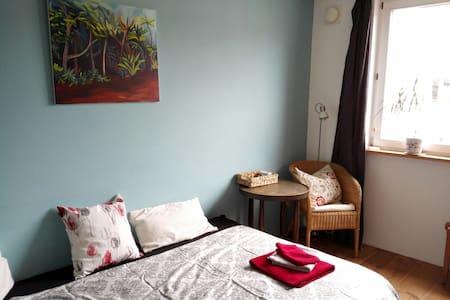 Gemütliches Zimmer im Ökostadtteil - Freiburg im Breisgau - Apartamento