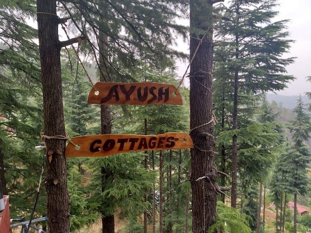 Vasu Cottage, Mthly 2P @ 25000/-
