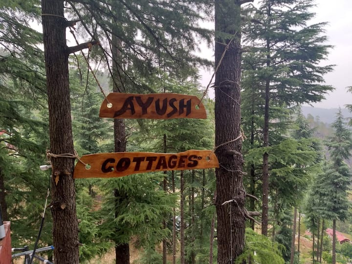 Vasu Cottage, Mthly 2P @ 27K + 1 week stay fre