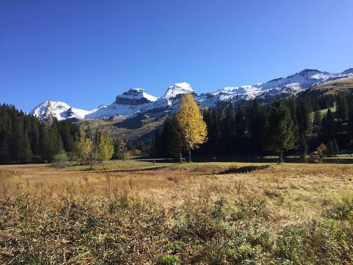 Traumhafte Ferienwohnung im Ski- und Wandergebiet