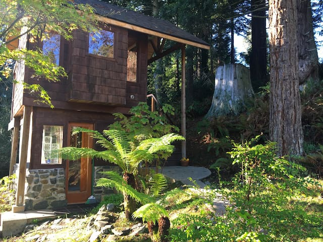 Gnome Home Redwood Cabin - Treehouses for Rent in Bayside ...