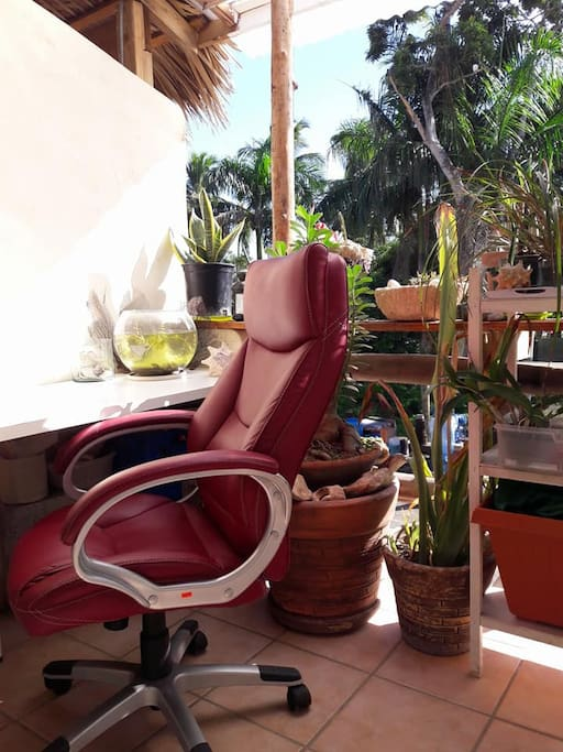 Incase you have to get some work done, do it surrounded by plants and fresh air in the Outdoor Office :)