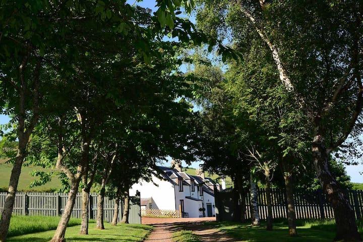 Kate's Cottages,                Kinnighallen