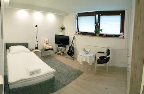 Helles Apartement in ruhiger Citylage