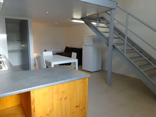 Appartement style loft (+jardinet)