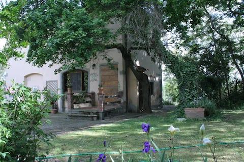 Typisk toskansk hus på landet med svømmebasseng