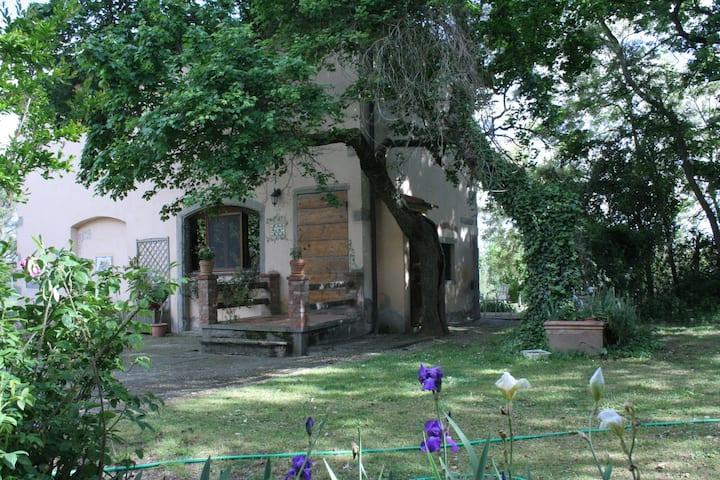 Casa tipica Toscana immersa nel verde con piscina