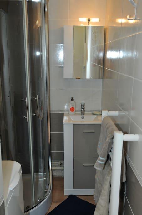 Salle de bain avec cabine de douche et machine à laver.