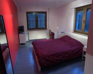 Grande chambre dans maison en colocation