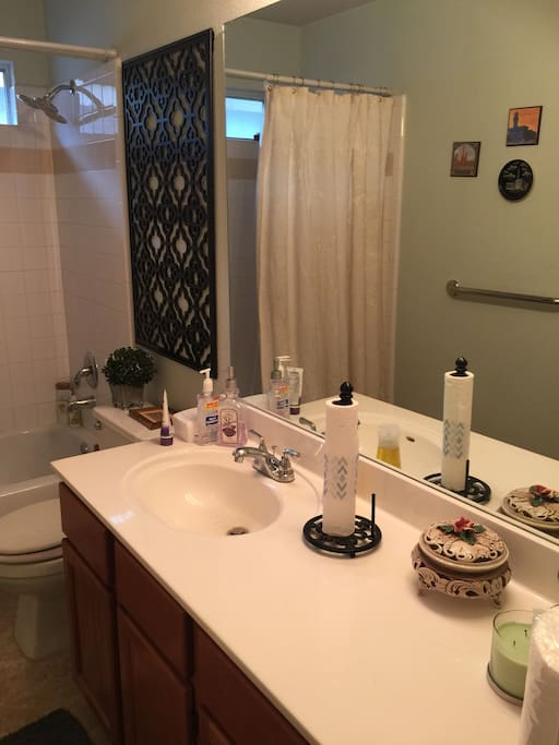 Private full bathroom for guests