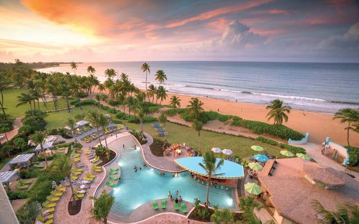 Ocean View Studio - Wyndham Margaritaville Rio Mar