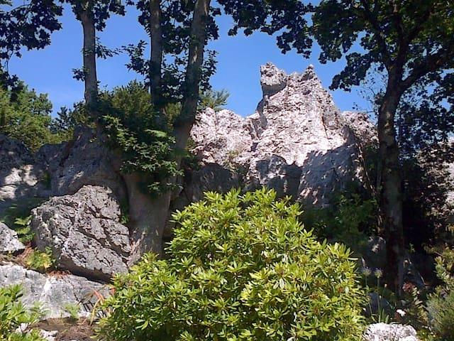Escale Bretonne au Rocher du Samoyède