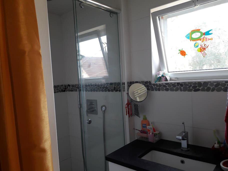 La salle de bain avec la douche et l'évier.