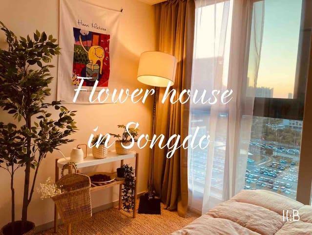 🌸OPEN SALE!🌸 꽃향기 가득 🌷송도 야경 플라워 하우스