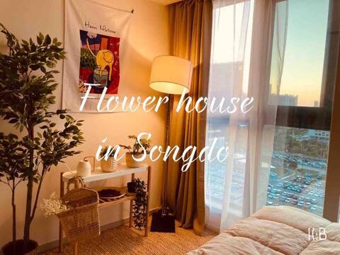 🌸OPEN SALE!🌸트리플 스트릿 도보 1분 꽃향기 가득 🌷송도 야경 플라워 하우스