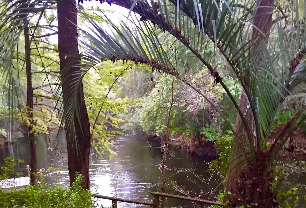 Riverfront Paradise -