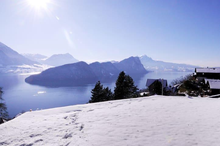 Villa Bella Vista - at hiking trail/Rigibahn