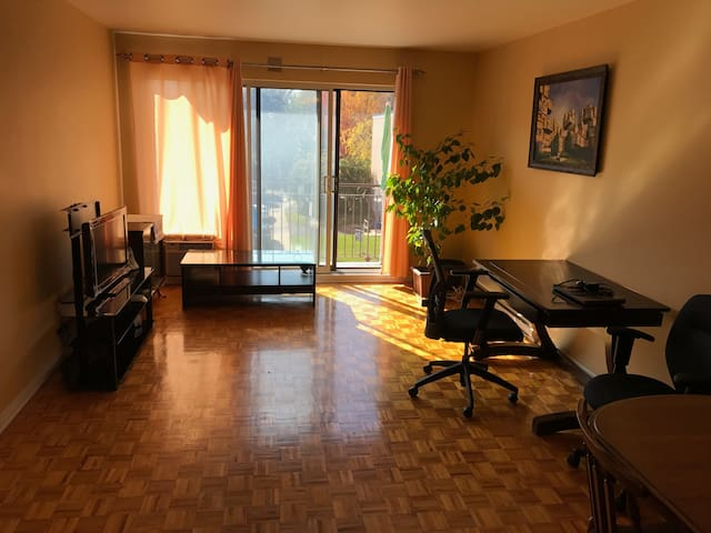 Two bedroom condo near Downtown Montreal (10 mins)