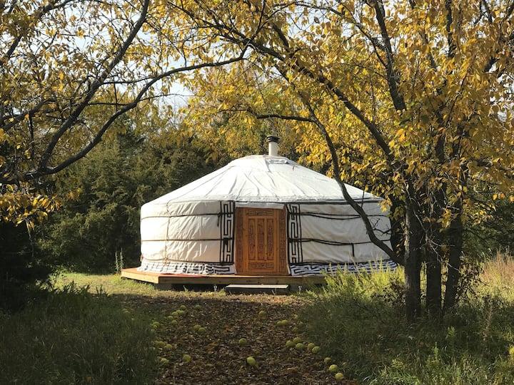Sun & Moon Mongolian Yurt, Off-Grid