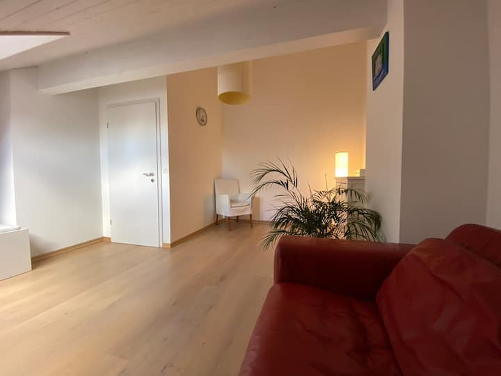 Top floor (90m2) in modern house close to Geneva
