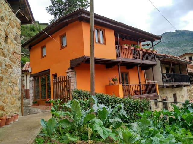 Casa de campo tipica Asturiana