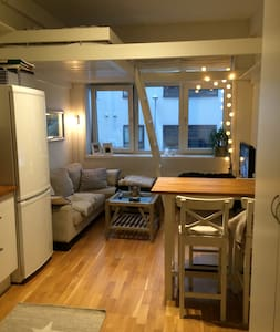 One person? Fully equipped and cozy apartment. - Bergen