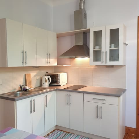 Cozy Flat In Charming House 35 M2 Net