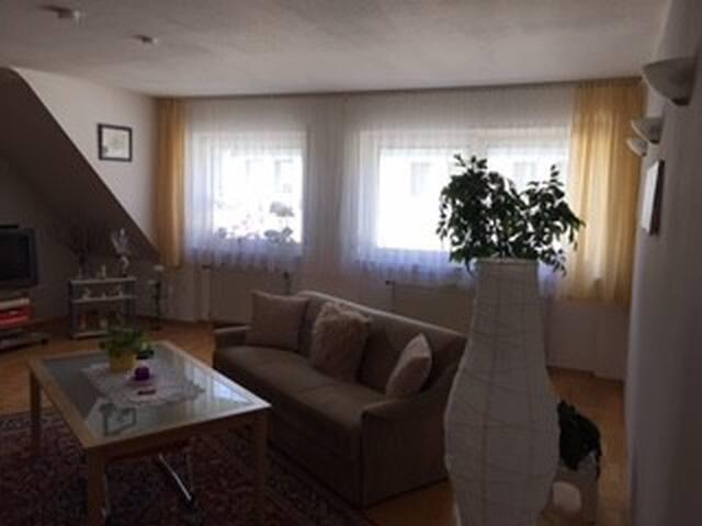 Maisonette Wohnung über den Dächern von Hanau