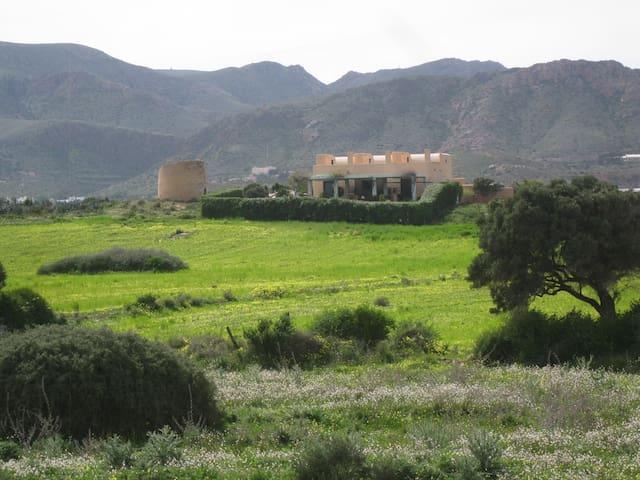 Primavera, vista posterior de la casa junto a la torre del molino.