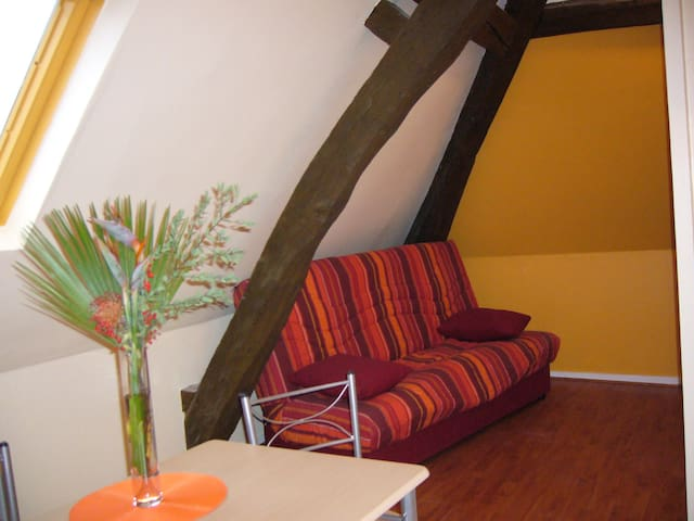 Studio sous les toits, proche châteaux de la Loire - Château-Renault - Apartamento