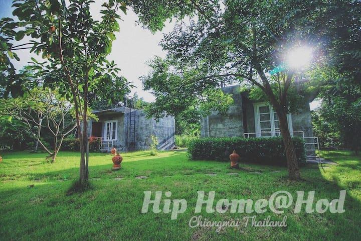 Hip Home@Hod (ฮิพโฮมแอดฮอด)