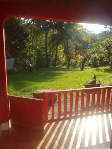 Blick aus der offenen Küche in den Garten