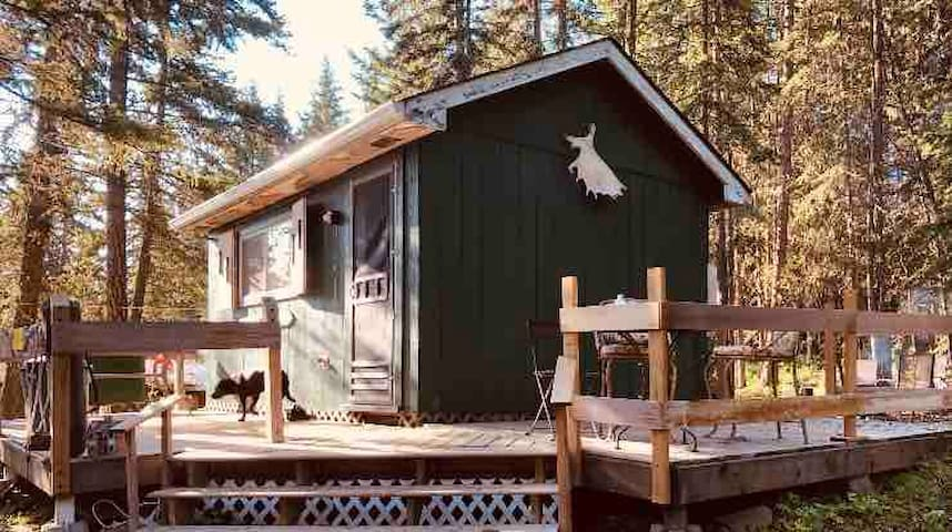 Cozy Cottage by Horse Lake, pet friendly