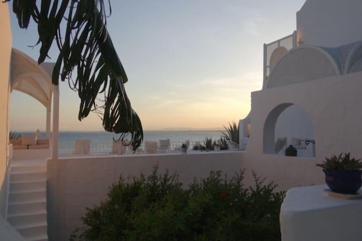 Dar Patroni Griffi - Villa in the Medina