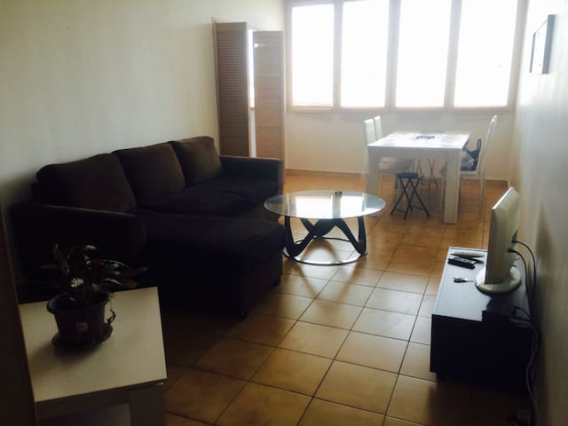 APPARTEMENT 3 PIECES 65M2 WIFI ET PARKING - Orly - Appartement