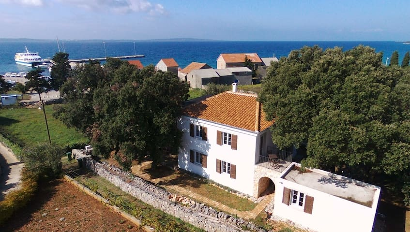 Villa Lavanda, just 50m from the port of Olib