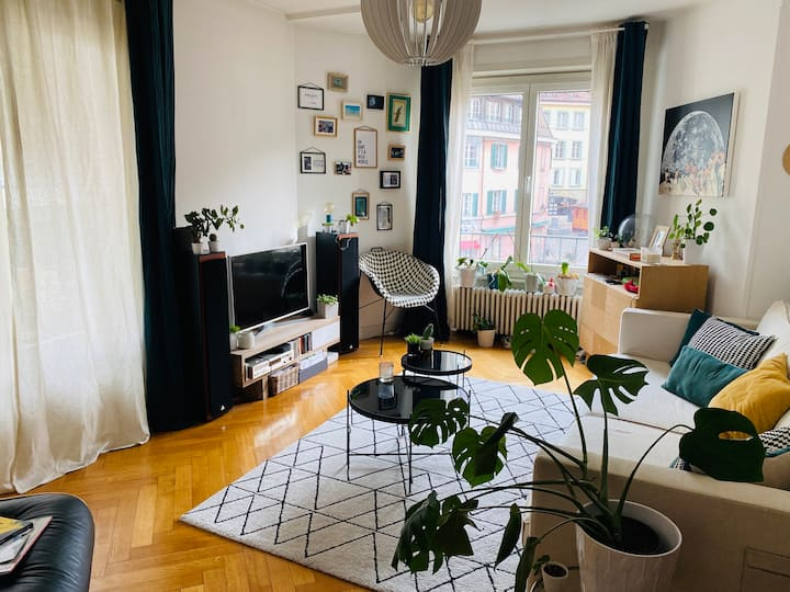 Nice bright and cosy nest in the heart of the city