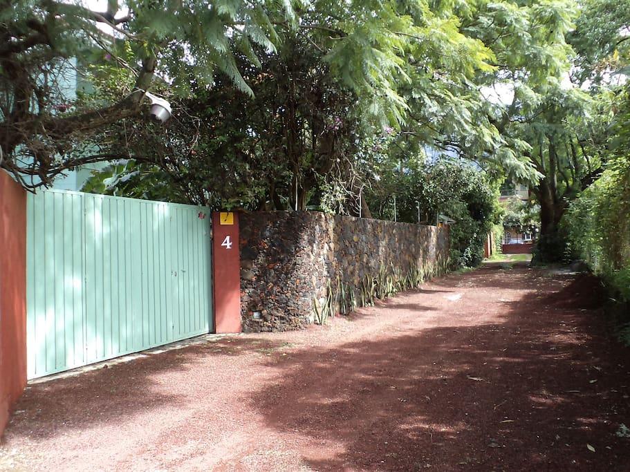 Vista de la entrada desde el callejón con mucha vegetación. / Entrance. Plenty of green.