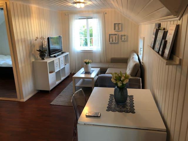 Koselig møblert leilighet i vakre Kolbjørnsvik