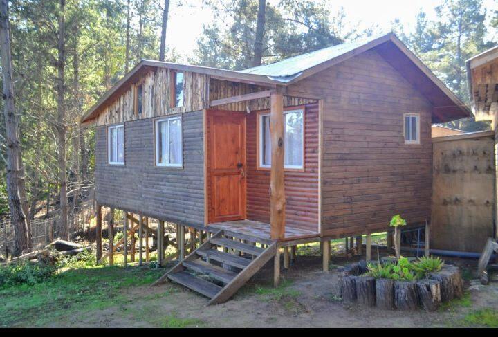 Cabaña de Ensueño del Bosque N 3