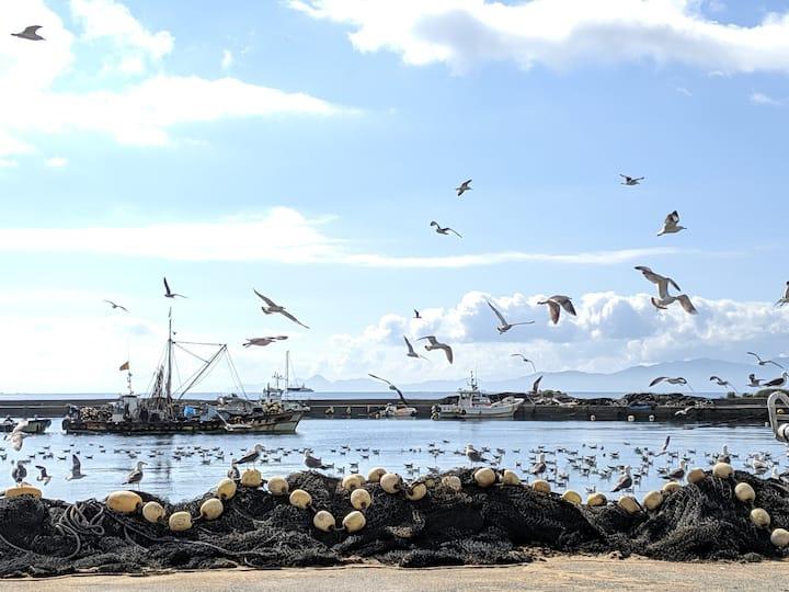 Fishery Port