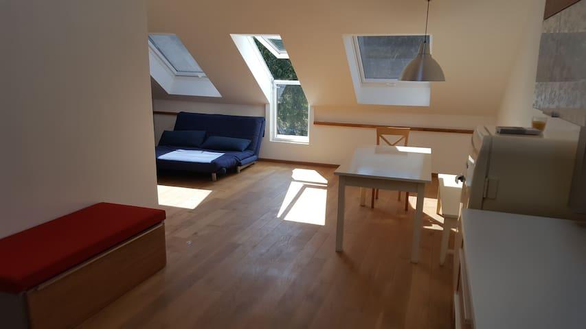 helle,moderne und ruhige Dachgeschosswohnung - Monachium - Apartament