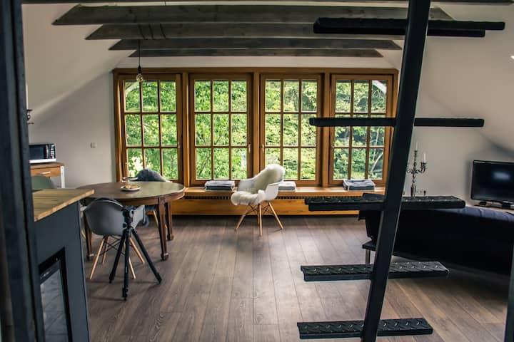 Casa Dahufo Schienen / Bodensee / Halbinsel Höri